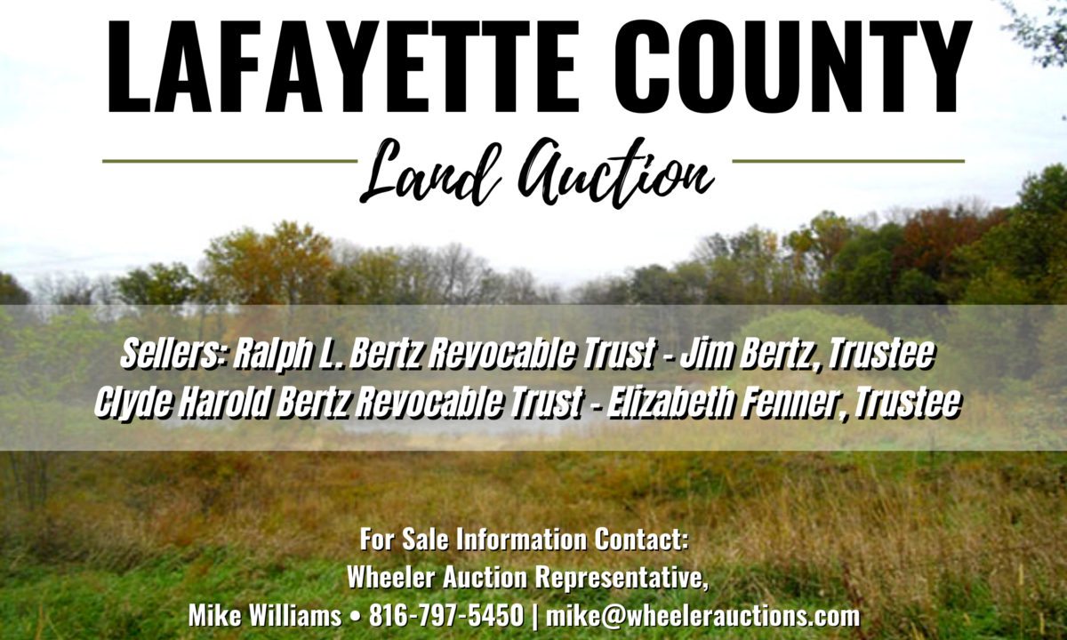 land-for-sale-in-lafayette-county