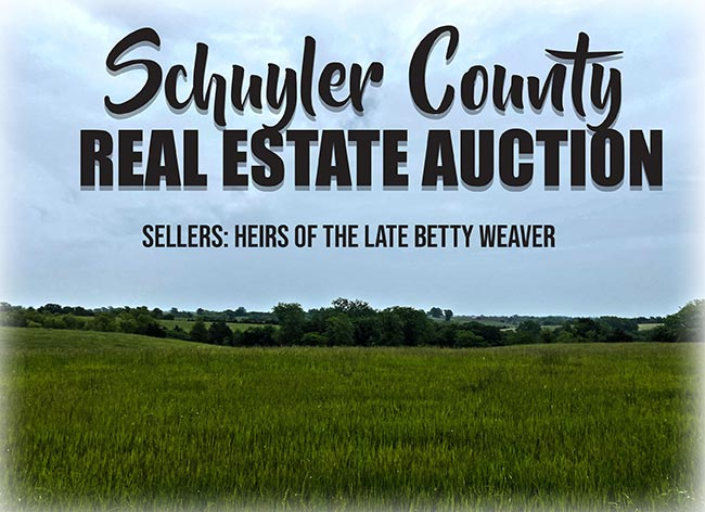 Schuyler County Real Estate Auction